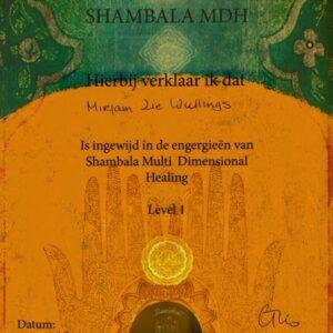 Shambala Multi Dimensional Healing 1