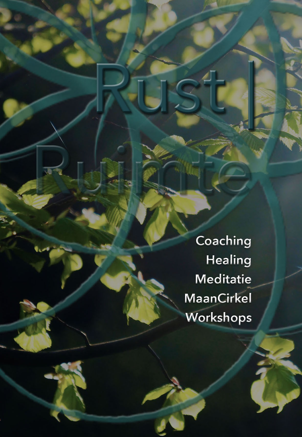 WS pagina Rust